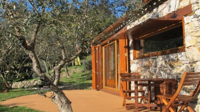 RESPIRE, RELAXE E INSPIRE-SE @ VALE DO NINHO NATURE HOUSES
